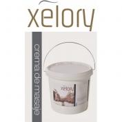 Creme de massagem Xelory 1kg - Uso profissional